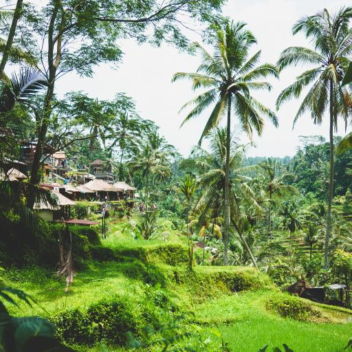 自然 景点 绿化 建筑