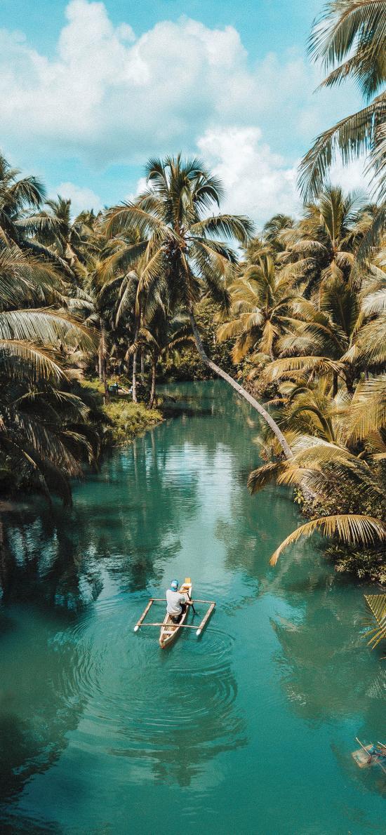郊外 美景 河流 椰树 船只