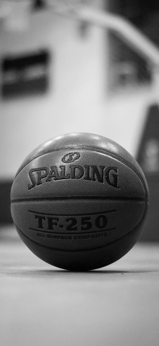 篮球 运动 球场 黑白