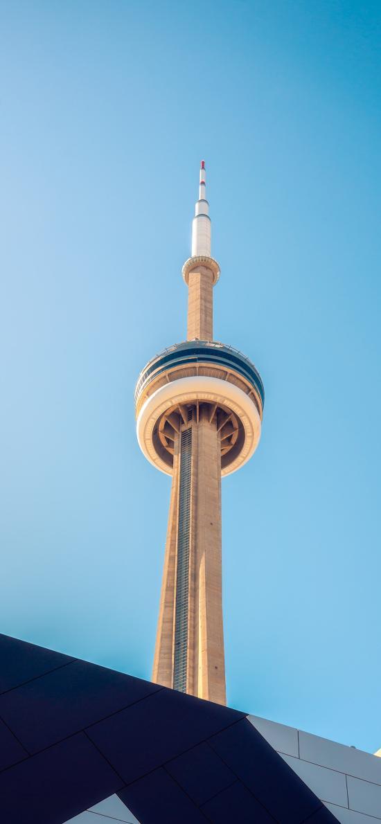 建筑 高楼 塔状 城市