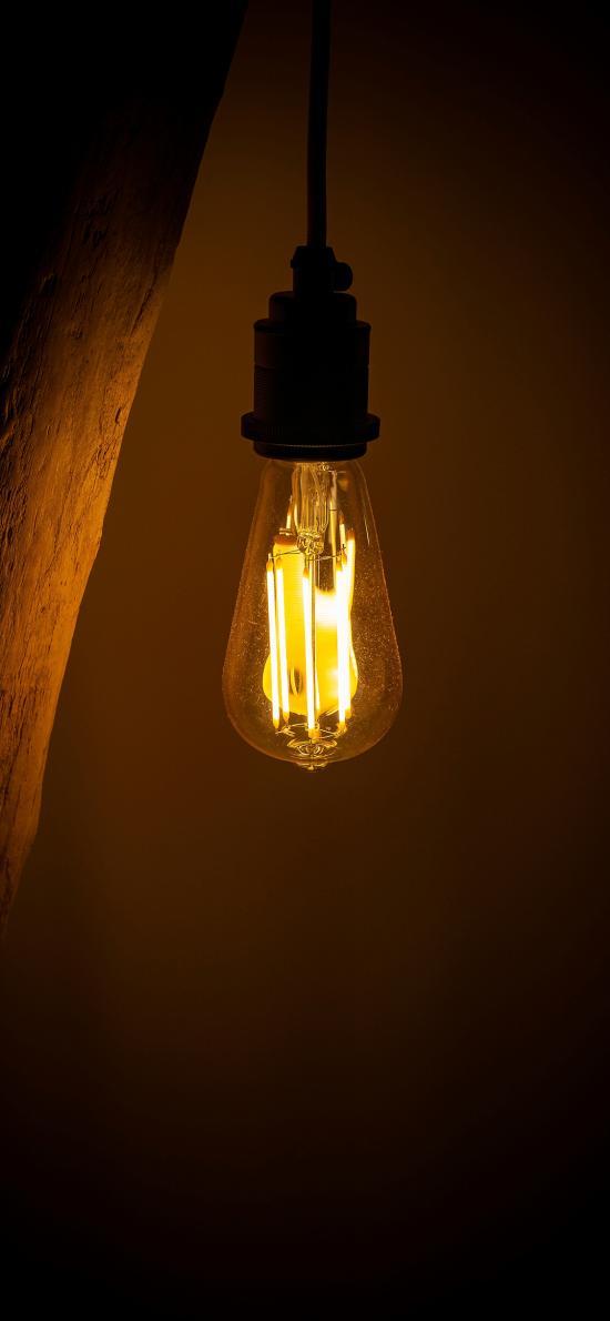 灯泡 灯光 钨丝 灯泡