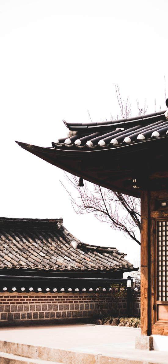建筑 复古 特色 屋檐
