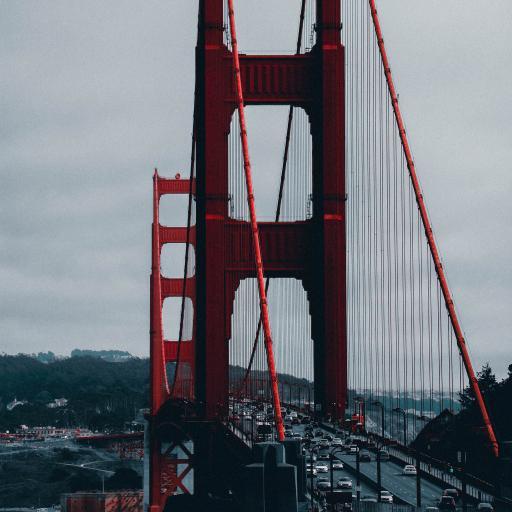 桥梁 金门大桥 玫瑰 地标