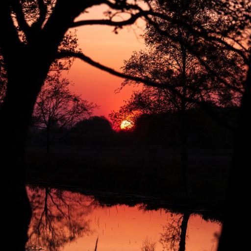 夕阳 落日 黄昏 河岸