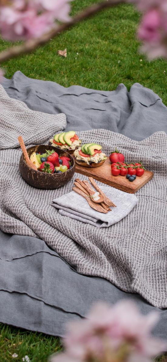 郊外 露营 水果 草莓 牛油果