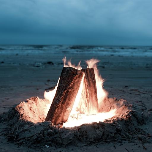 大海 沙滩 火堆 燃烧 木柴
