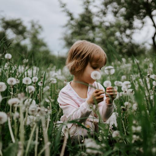 女孩 草丛 鲜花 花球 欧美