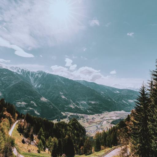 树林 天空 晴朗 远眺 高山