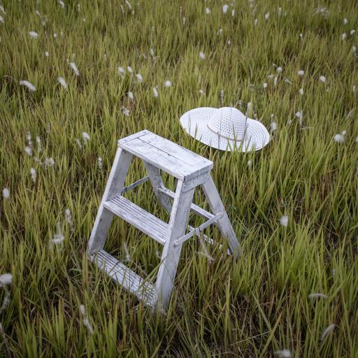 草地 帽子 爬梯 梯子