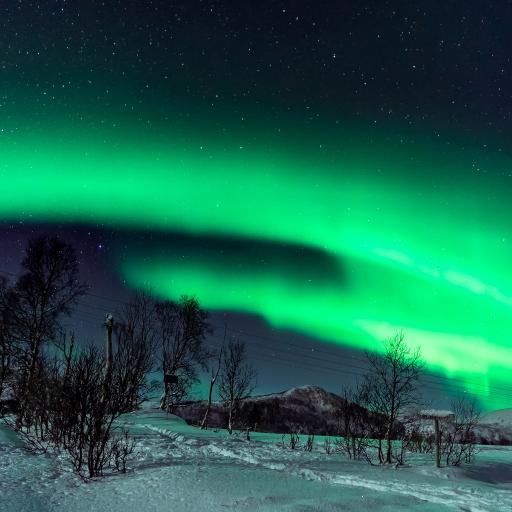 极光 大自然 天文现象 雪地 星空