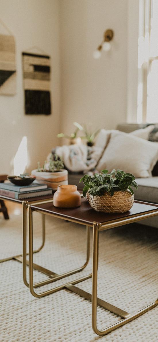 家居 桌椅 盆栽 绿植 书籍 静物