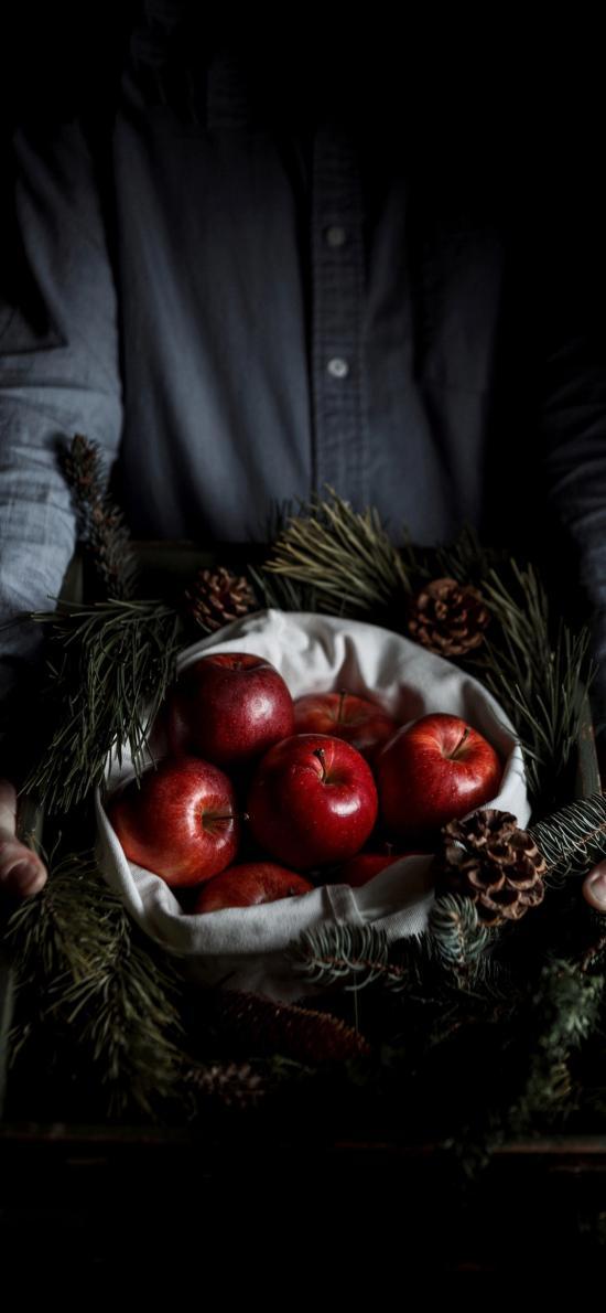 苹果 水果 黑暗 松果