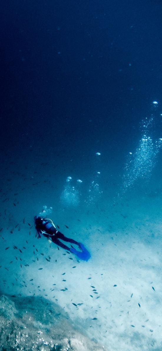 潜水 深海 鱼群 大海