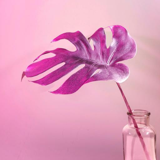 装饰 龟背竹 粉紫 玻璃瓶
