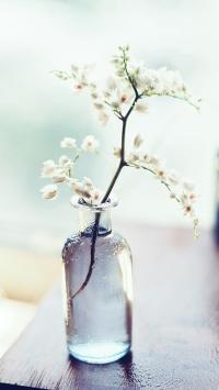 玻璃 花瓶 插花 白色 小清新