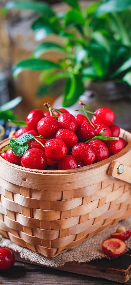 樱桃 水果 新鲜 鲜红