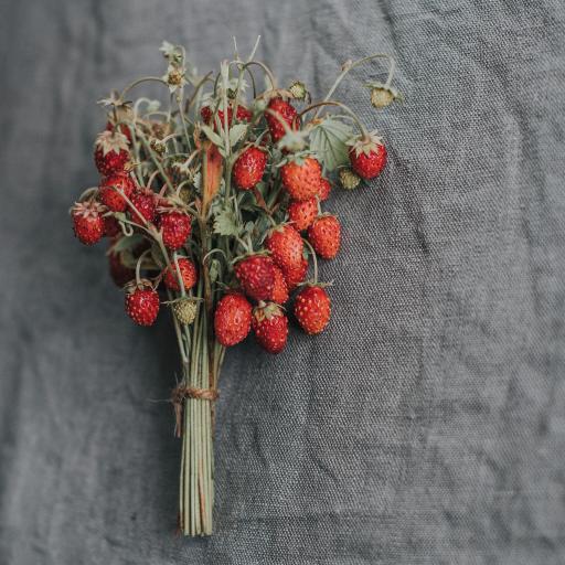 野莓 莓果 野草莓 一束