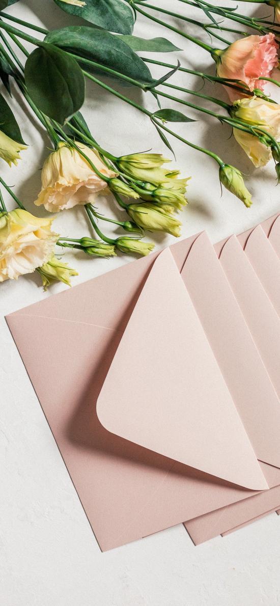 鲜花 康乃馨 信封 粉色
