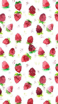 水果 树莓 插画 平铺 色彩