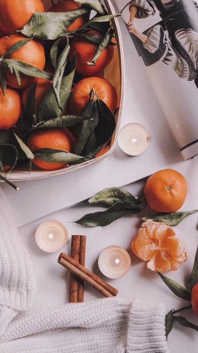 水果 柑橘 橘子 桔子 蜡烛 桂皮 杂志