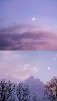 拼接 自然 傍晚 飞鸟 山峰 美景 唯美