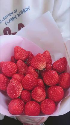 草莓 新鲜 水果 花束