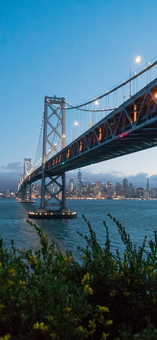 大桥 桥梁 傍晚 江面