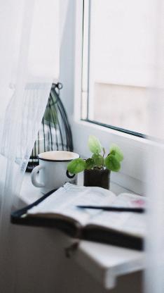 静物 盆栽 水杯 书本