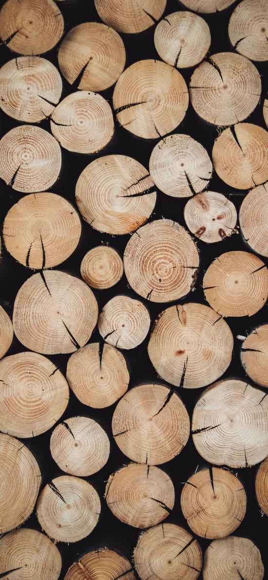 木柴 堆积 砍伐 树干