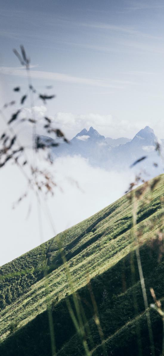 郊外 自然风景 山峰 小草