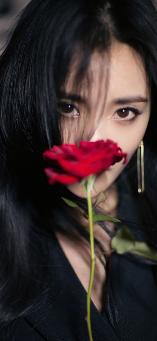 杨幂 演员 玫瑰 艺人