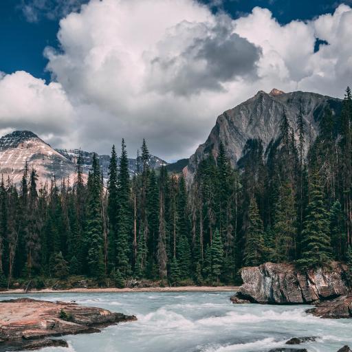 自然 蓝天 树木 瀑布流水 美景
