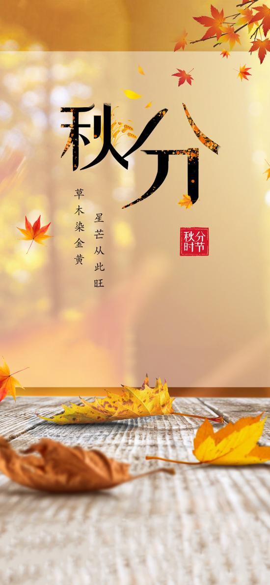 秋分 秋天 二十四节气 星芒从此旺
