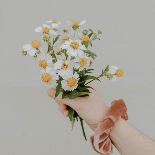 鲜花 雏菊  花束 小花 手臂