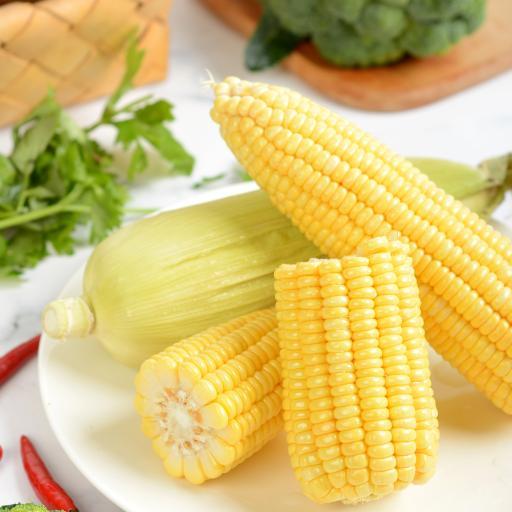 玉米 食材 新鲜 西蓝花