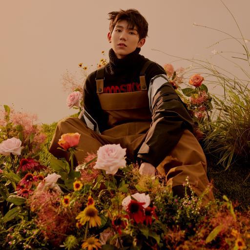 艺人 演员 歌手 TFboys 王源