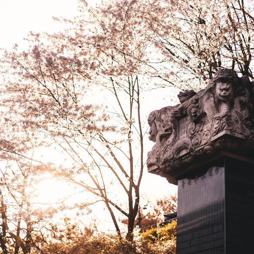 景点 石碑 雕像 树木