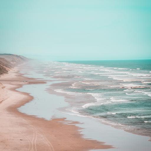 大海 海岸 沙滩 海浪