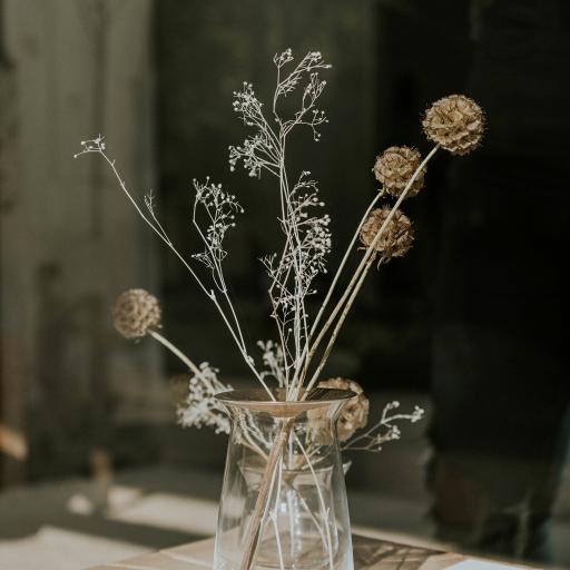 干花 装饰 玻璃瓶 静物