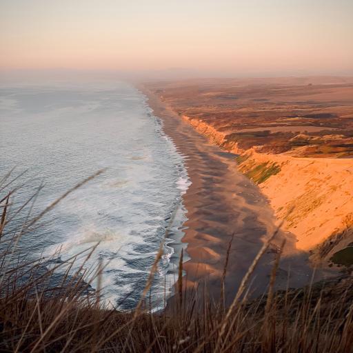 大海 浪花 沙滩 美景