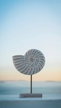 静物 装饰品 装饰 饰品 海螺
