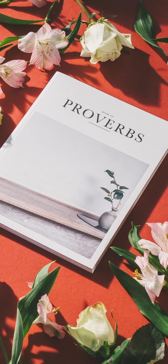 静物 书本 杂志 鲜花