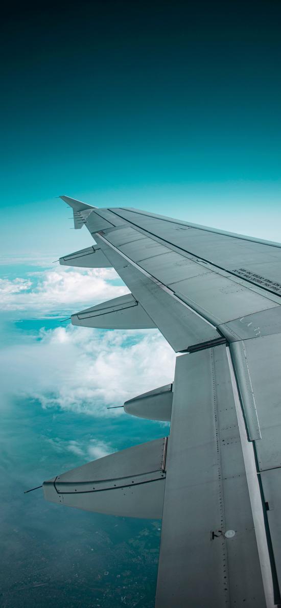 机翼 飞机 航空 飞行