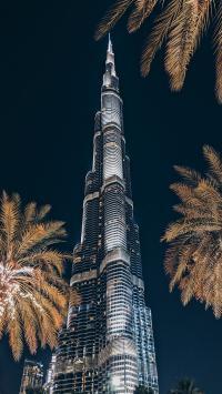 迪拜大楼 建筑 高耸 树木