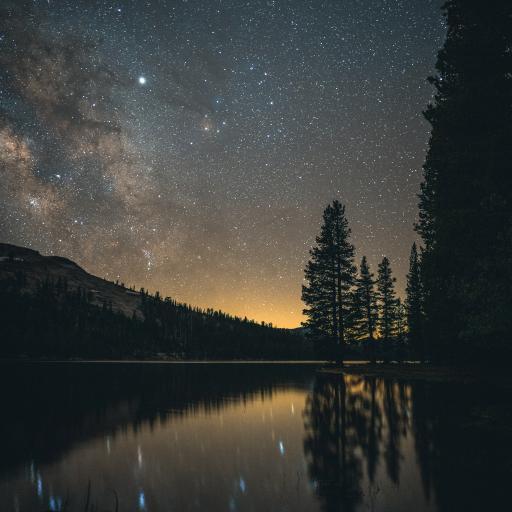 湖泊 树木 星空夜景 唯美