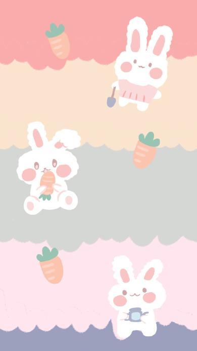 兔子 色彩 胡萝卜 可爱