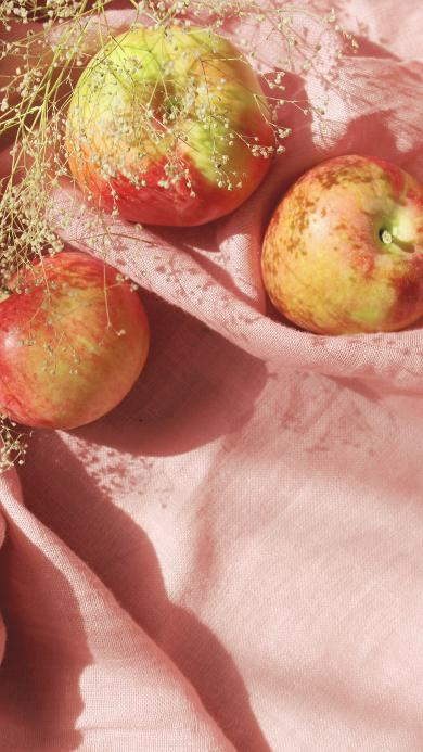 苹果 满天星 干花 水果 粉