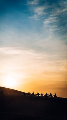 蓝天 白云 沙漠 骆驼