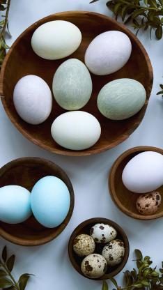 鹌鹑蛋 鸡蛋 鸭蛋 色彩