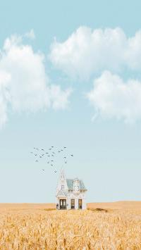 田野 飞鸟 鸟群 房屋 建筑